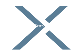 MAX SERVICE KG Logo